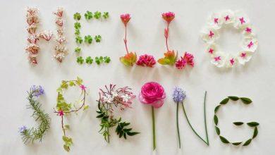 Photo of مناظر طبیعت فصل زیبای بهار – تماشایی و مبهوت کننده