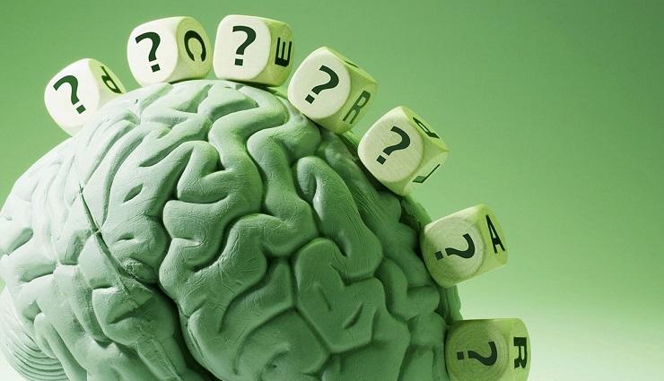 مدل مغزی هرمان