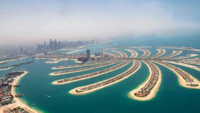 Photo of جزیره نخل دبی ، آخرین حد از لوکس بودن و جذابیت