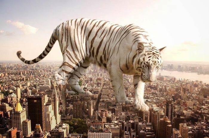حیوانات غول پیکر و بزرگ