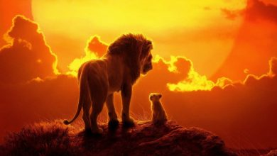 Photo of امتیازات و واکنش منفی منتقدان به فیلم شیر شاه – The Lion King