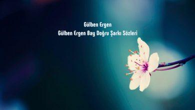Photo of متن و ترجمه آهنگ بای دوگرو ، Bay Dogru از Gülben Ergen – گولبن ارگن