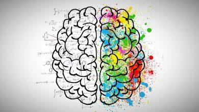 Photo of بهترین بازی های فکری اندروید برای پرورش مغز و ذهن ۲۰۱۹