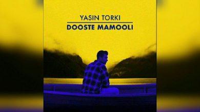 Photo of متن آهنگ دوست معمولی یاسین ترکی – Dooste Mamooli + کلیپ موزیک