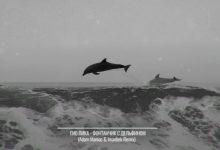 تصویر متن و ترجمه آهنگ фонтанчик с дельфином از Гио ПиКа