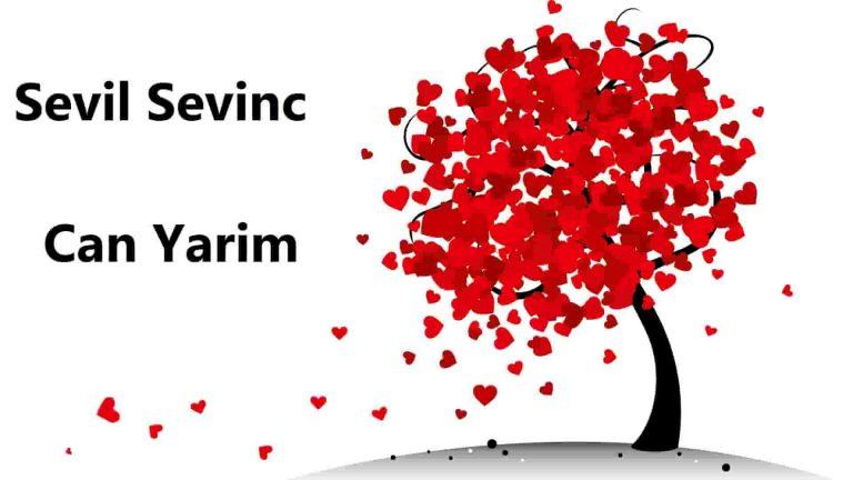اهنگ ترکی سویرم دنیا قدر او منیم جان یاریم