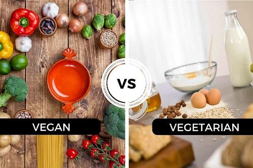 رژیم غذایی گیاهخواری و وگان چیست؟ بررسی تفاوت ها و مزیت ها