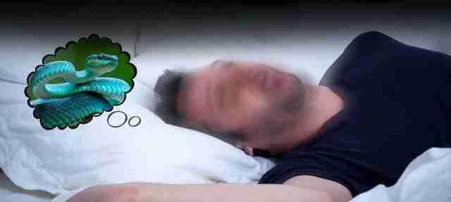 خواب نیش مار