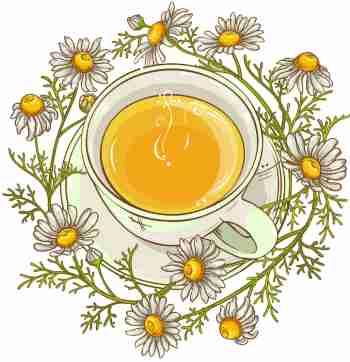 درمان خانگی ترش کردن معده با چای