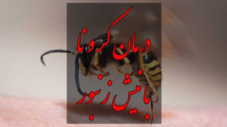 درمان کرونا با نیش زنبور عسل