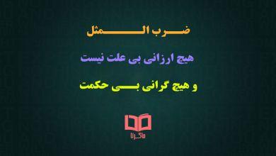 تصویر داستان و معنی ضرب المثل هیچ ارزانی بی علت نیست و هیچ گرانی بی حکمت