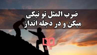 تصویر معنی ضرب المثل تو نیکی میکن و در دجله انداز که ایزد در بیابانت دهد باز