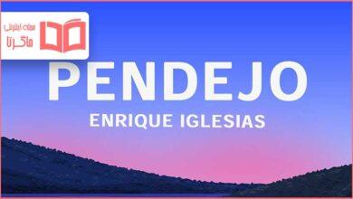 متن و ترجمه آهنگ PENDEJO از Enrique Iglesias